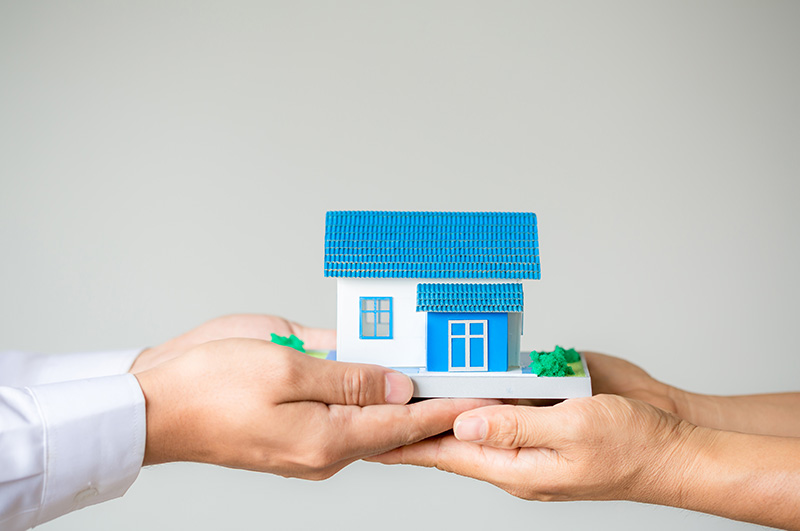 Shourav Properties Ltd